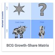 BCG Growth-Share Matrix Category
